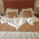 Beautiful towel art by our housekeeper Hassan