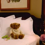 Planters Inn Teddy Bear
