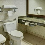 Queen Wheelchair Accessible Bathroom 2