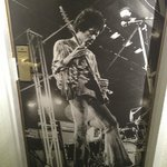 Photo of Jimi on a ground floor door