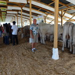 Me at the AG show here in La Ceiba