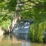 The byes Sidmouth