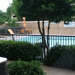 Courtyard by Marriott Dallas Richardson at Campbell resmi