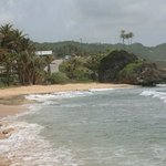 East coast Bathsheba