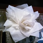 Tissue Flower in Bathroom