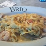 Lobster and shrimp fettuccine