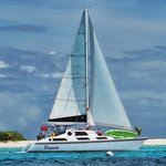 Sailing Catamaran Picante Private Day Tours