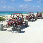Cozumel Cruise Excursions - Island Marketing Ltd - Private Tours