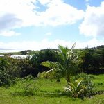 View from the front porch of Kainga Nui
