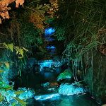 Shanklin Chine by night