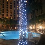 Loved the lights at night by pool