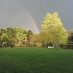 A guest took this after a spring rain shower.  This is the view behind room #7.