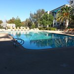 Foto de Embassy Suites Temecula Valley Wine Country