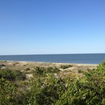 View of the beach from Cape Henlopen state park