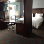 Фотография Hampton Inn & Suites Shreveport/Bossier City at Airline Drive