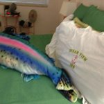 lovely fish pillow on the bed!