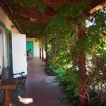 Shady cool verandah