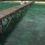 Photo de Raja Ampat Biodiversity Resort