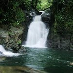 Foto de Mulu World Heritage Area