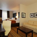 All Spacious Suites Offer Sleeper Sofa and Work Desk