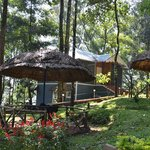 Blue  Bells Resort Munnar-kerala-india