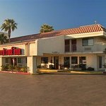 Photo de Red Roof Inn Palm Springs - Thousand Palms