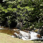 Mountain Stream on property