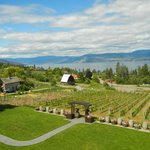 Pyramid Vine Yard, west bank across the Okanagan Lake