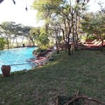 The pool area overlooking the Serengeti Plains