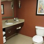 Foto van Holiday Inn Express & Suites Manassas