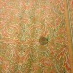 stains on hall carpeting