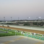 Plowing the track before each race @ Riyadh Race course