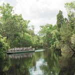 River boat tours abound in Citrus County.