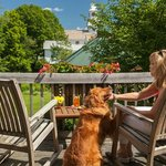 Pet Friendly Vermont Lodging!