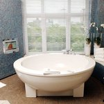 Bath tub in Palace Suite with TV and view over Botanical garden