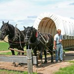 The covered wagon ride and the super nice young man who ran it