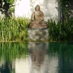 Buddha Statue And Swimming Pool