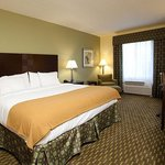 Holiday Inn Express and Suites St Augustine King Room