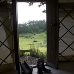 A view of from one of the yurts