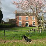 Broome Park Farm B&B