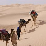 Autre Tunisie Private Day Tours