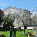 Bed and Breakfast Cascina Antonini Foto