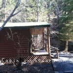 Spring Cabin (sleeps 5) - Creekside Cabins, Seward AK