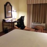 Bilde fra Hilton Garden Inn Wilmington Mayfaire Town Center
