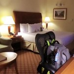 Φωτογραφία: Hilton Garden Inn Wilmington Mayfaire Town Center