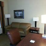 Hampton Inn & Suites Jacksonville-Airport照片