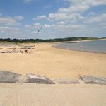 the dog friendly beach at trecco lovely