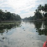 The open Backwaters