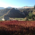Colca Lodge Spa & Hot Springs - Hotel
