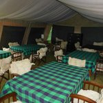 The mess tent with super sheepskin throws on chairs
